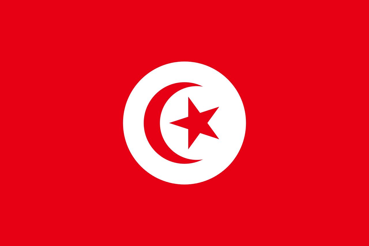 pre-1999_flag_of_tunisia-svg